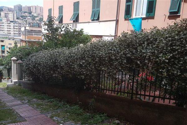 MARASSI - Via della Zebra - mq. 100